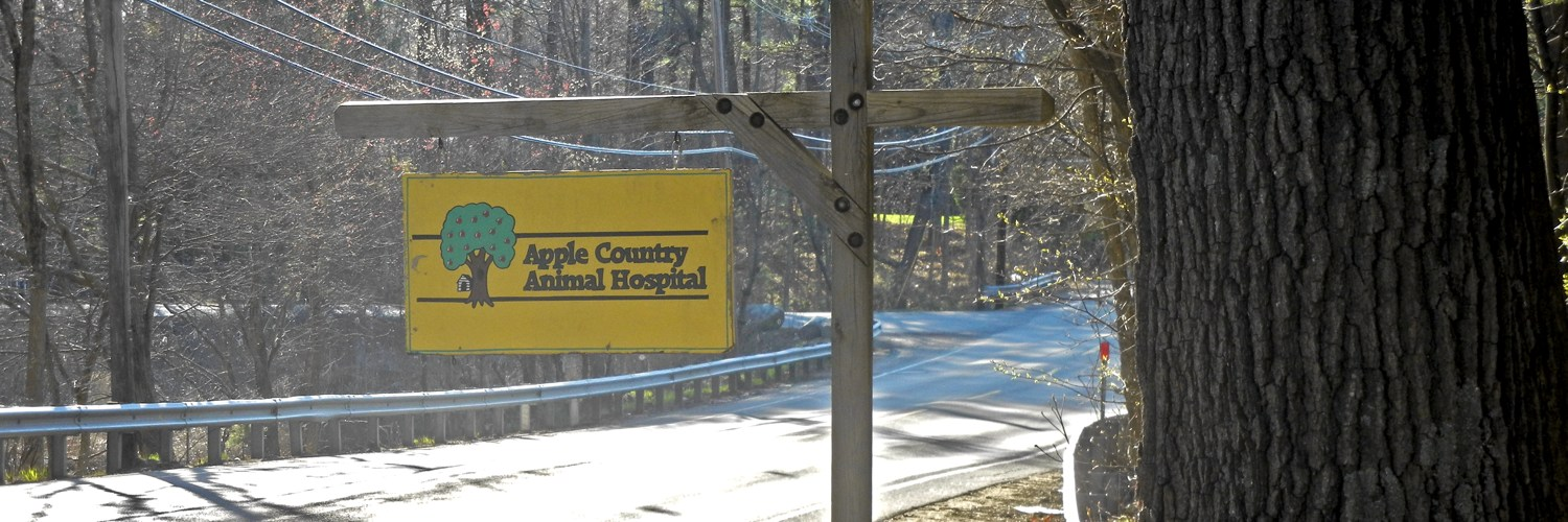 Apple Country Animal Hospital road sign